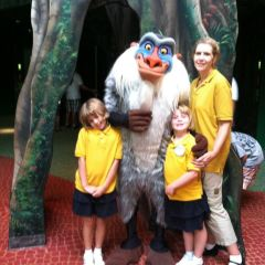 Disney Animal Kingdom User Photo