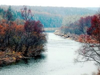 遜別拉河自然保護區