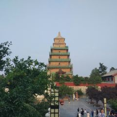 대안탑 여행 사진