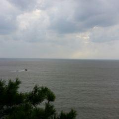 33米高南海觀音用戶圖片