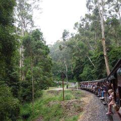 Dandenong Ranges User Photo