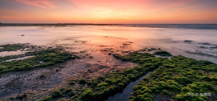 오채 해변