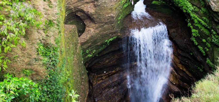 Davis Falls