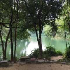 Shihua Park User Photo