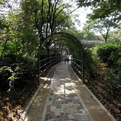 취안청공원 여행 사진