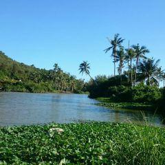 Coconut Island User Photo