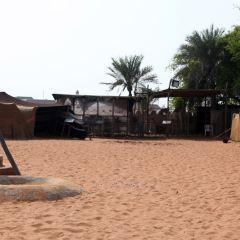 Camel Museum User Photo