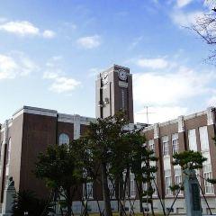 京都大學綜合博物館用戶圖片