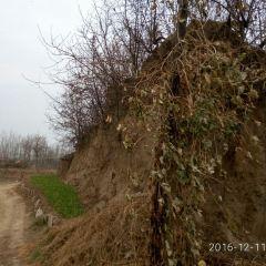 Zhuguo Ancient City User Photo