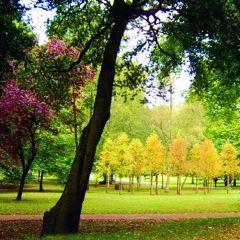 Bute Park User Photo