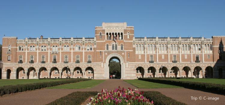 Rice University
