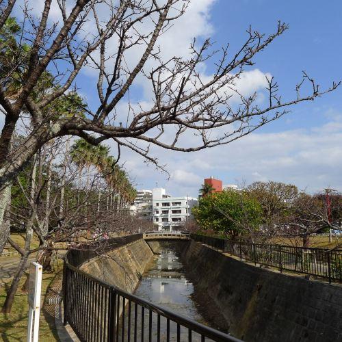요기 공원