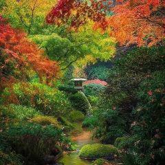 黃河生態園用戶圖片