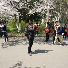 난징린예따슈에 여행 사진