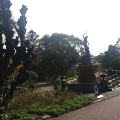 The Royal Botanic Garden Sydney User Photo