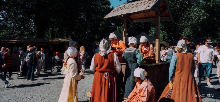 Medieval Market1