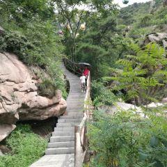 린이 톈마섬 관광지 여행 사진