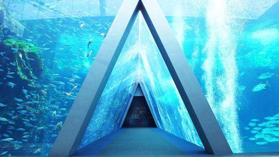 福島水族館