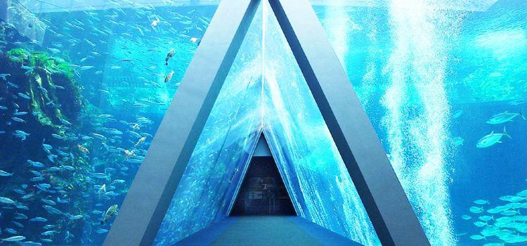 福島水族館1