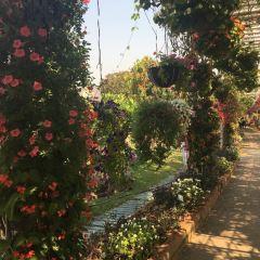 로열 파크 랏차프룩 여행 사진