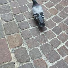 瑪麗亞·特蕾西亞大街用戶圖片