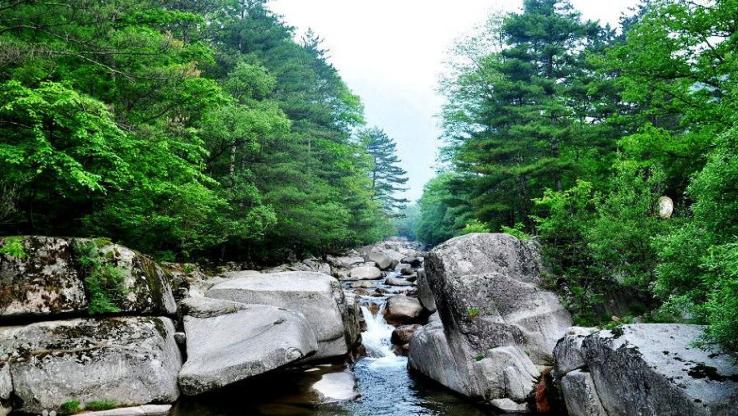 通天河國家森林公園