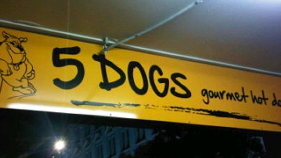 5 Dogs