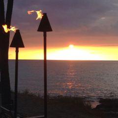 Lava Lava Beach Club用戶圖片