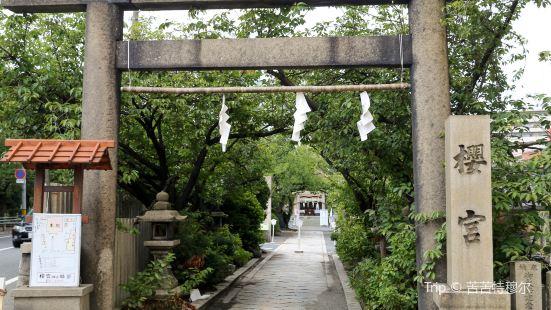 케마 사쿠라노미야 공원