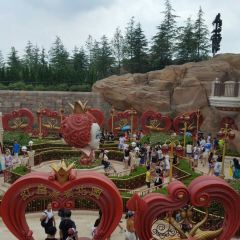 愛麗絲夢遊仙境迷宮用戶圖片