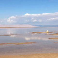 傑瑞德鹽湖用戶圖片