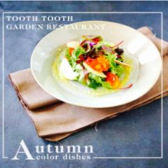 Tooth Tooth Garden Restaurant User Photo