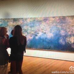 Walker Art Gallery User Photo