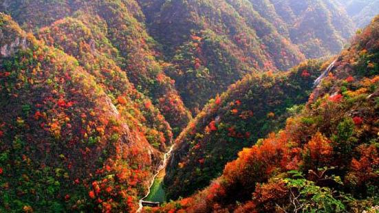 深山紅色旅遊景區