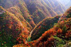 深山红色旅游景区-敦化-mayq_qi