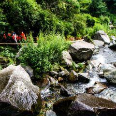 Qingbi Creek User Photo
