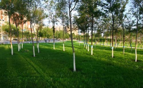 Liming Park