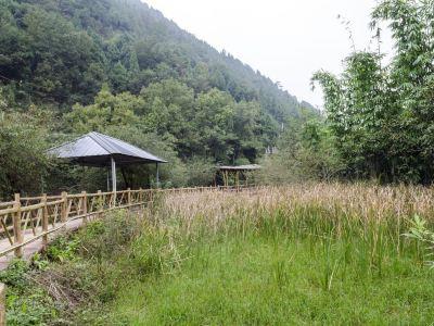 梨花溝風景區
