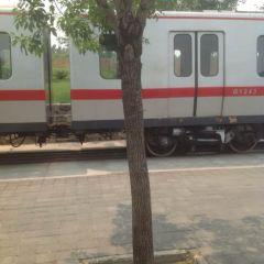 Railway Culture Park User Photo