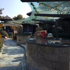 Overseas Chinese Town Yunhai Hot Springs User Photo