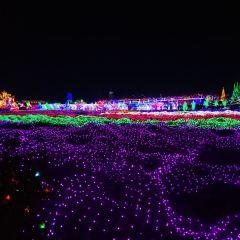 邯山香草湖文化產業園用戶圖片
