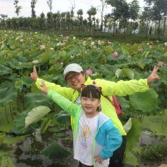 Yueliangwan Wetland Park User Photo