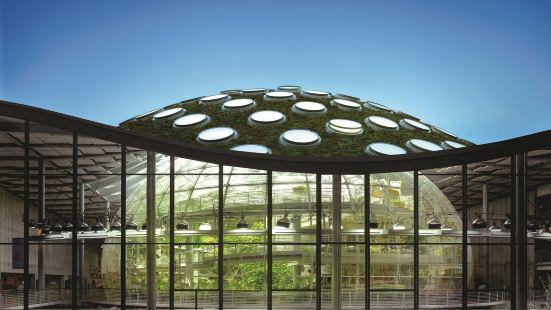 加州科學博物館