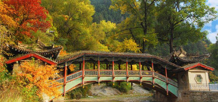 싱룽산 자연보호구2