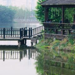 城北河濕地公園用戶圖片