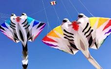 呼和塔拉草原国际风筝节-呼和浩特-AIian