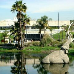 La Brea Tar Pits & Museum User Photo