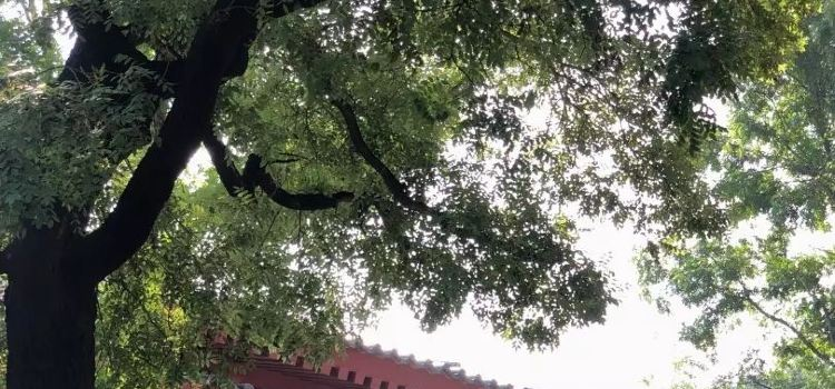 華清禦湯溫泉2