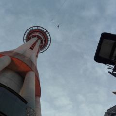 Auckland Sky Tower City Bungee Jumping User Photo