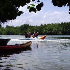 Borneo Kellybays User Photo